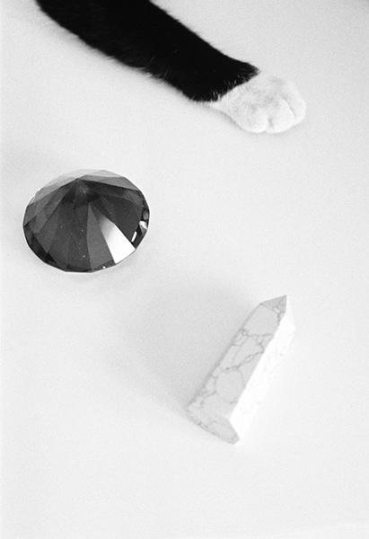 EsperanzaMoya-still-life-Yoli-leg